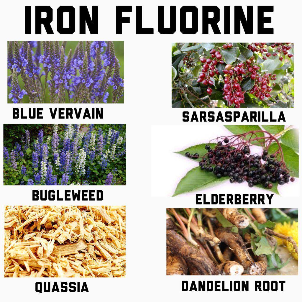 Iron Capsules | Healing | Alternative health, Holistic