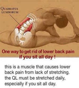 lower back muscle spasms  stretches and yoga  health