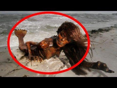 Real Life Mermaid Melissa Footage On Tropical Island Youtube