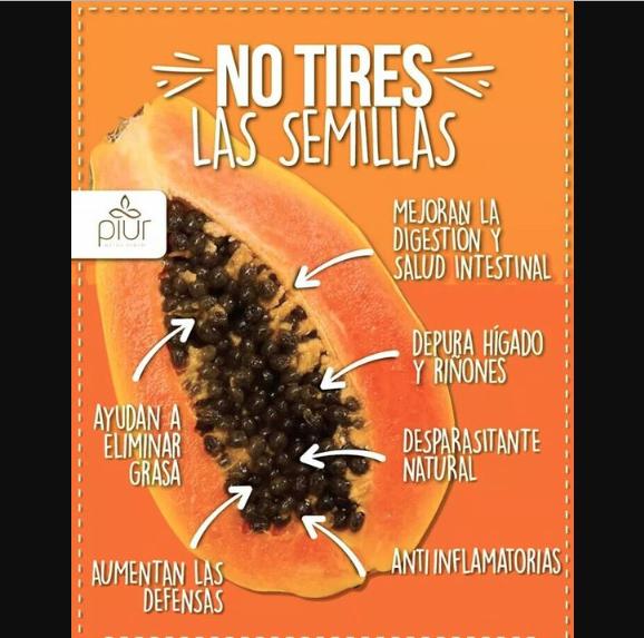 Semillas De Papaya Y Sus Potentes Beneficios Salud Yg Semillas De Papaya Recetas Para La Salud Salud