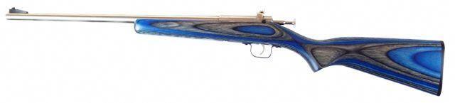 Crickett Rifle Single Shot Youth Model (~$150) many stock options
