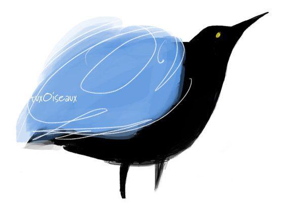 Oiseau bleu pâle noir dessin numérique original par AuxOiseaux