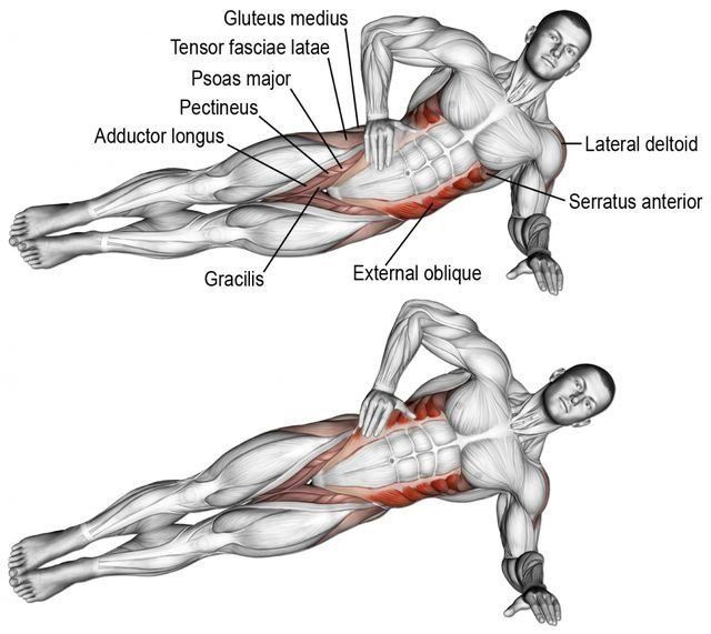 21+ If You Want to Slim Your Waist And Sculpt A Strong Defined Core These Are the 6 Best Side Plank Variations   GymGuider.com