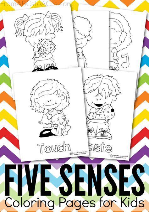 Five Senses Printable Coloring Pages Activities For Kindergarten Children Coloring Pages Senses Preschool