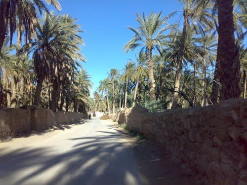 Explore Chetma in the region of Biskra Algeria - Travel ideas and destination guide for your next visit. Frequently updated local information such as a photo gallery, local webcams, hotels, videos and more. A good first impression of what this palce is like.