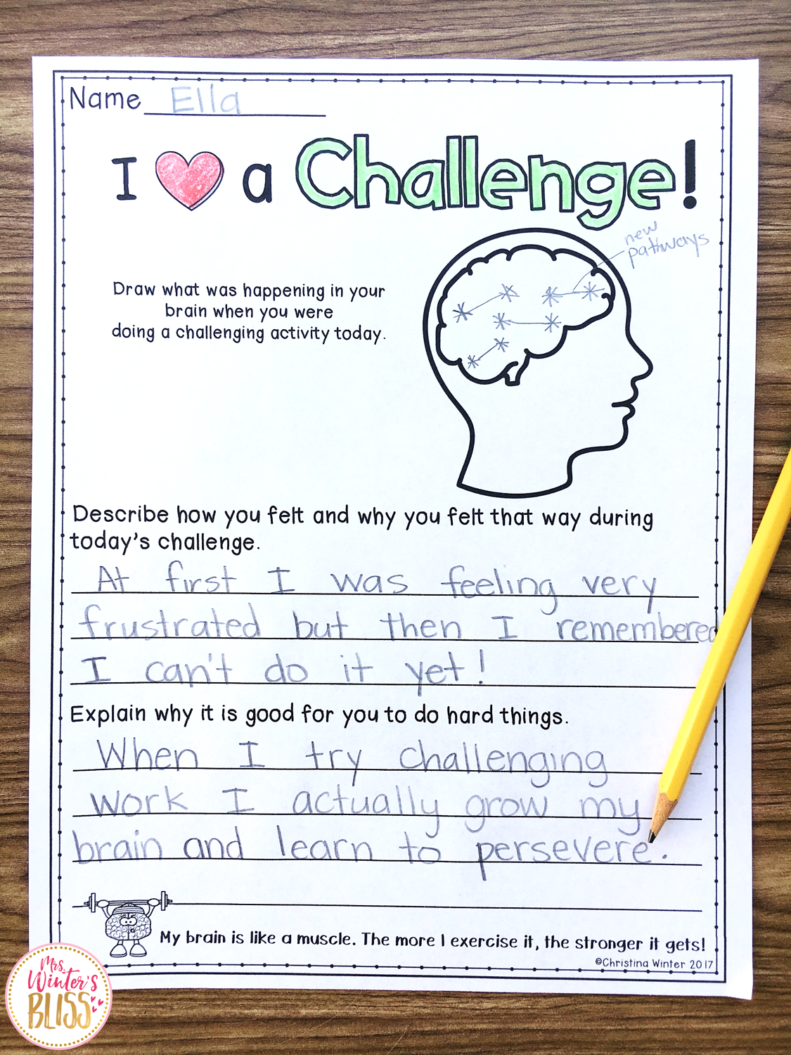 Ideas To Help Students Experience Challenges Amp Persevere
