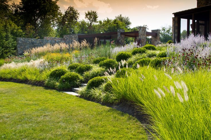Carex: Garden Design By Carolyn Mullet : Photo