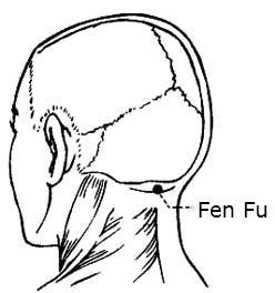 Image result for fen fu