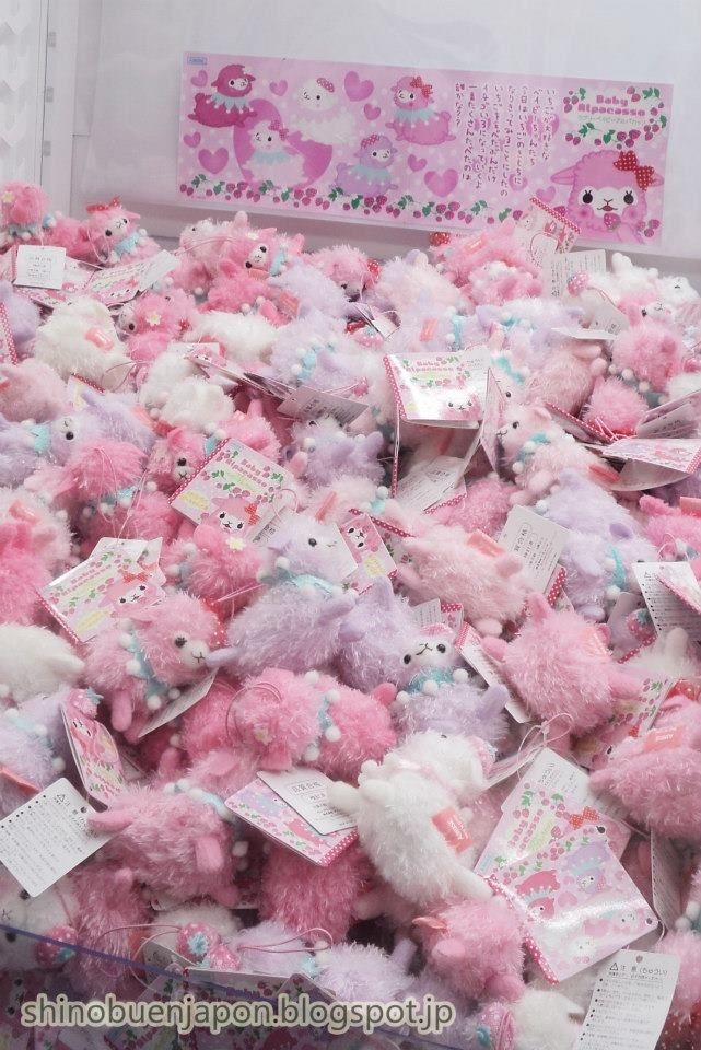 pile of pastel alpacas say that three times fast XD