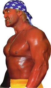 Hulk Hogan Png Google Search Hulk Hogan Professional Wrestler Hulk