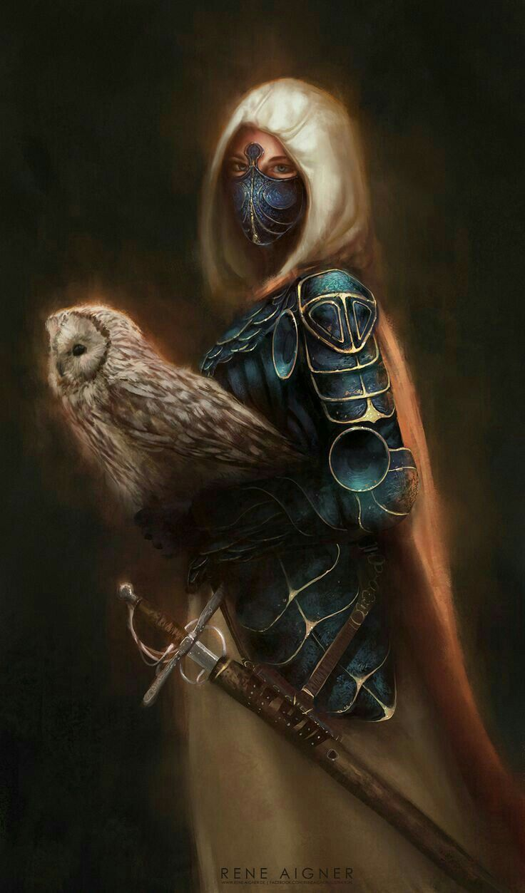Druid rogue with images female fighter