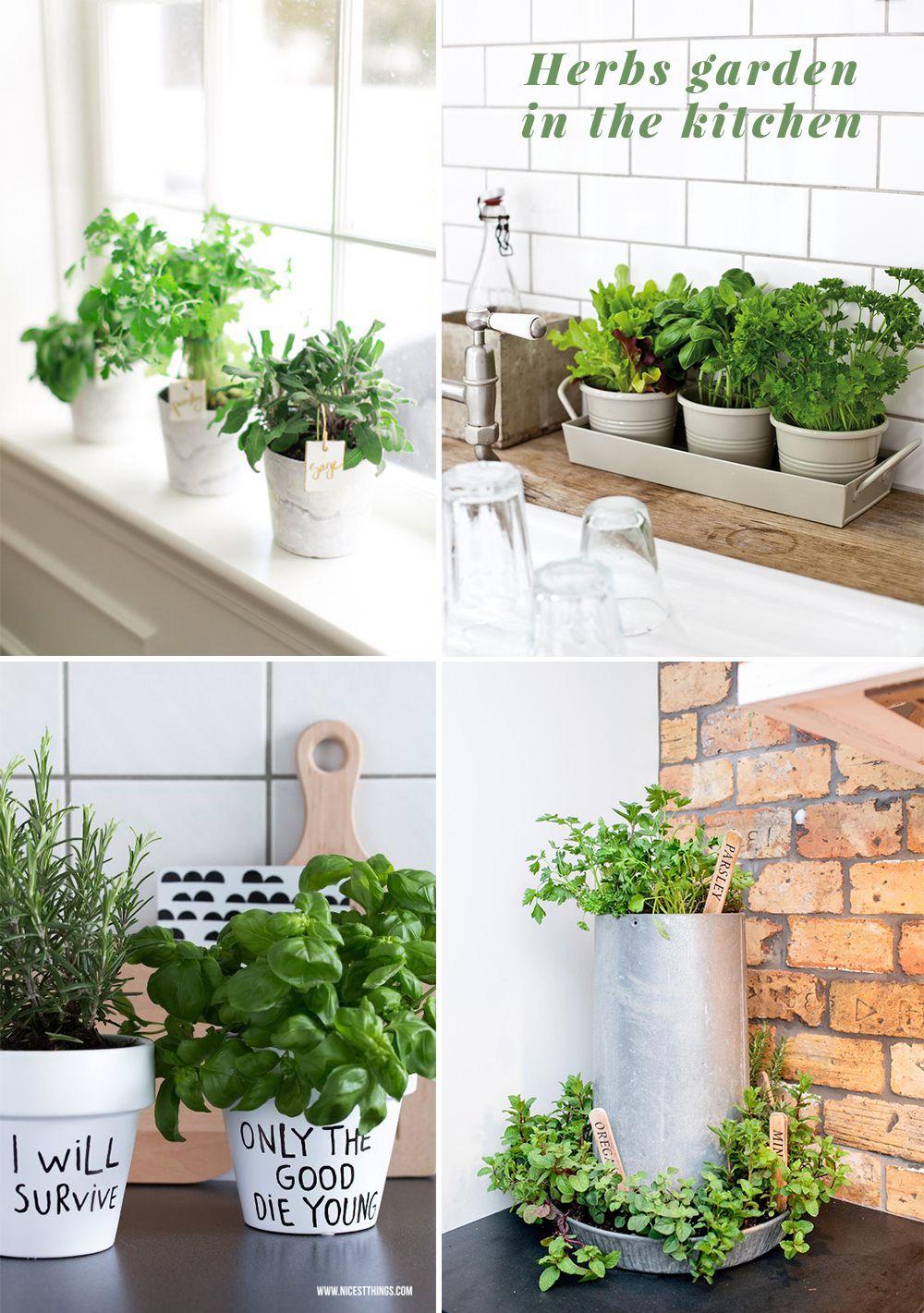 Herbs In The Kitchen Ideas Herb Garden Pots Herb Garden In Kitchen Herb Pots
