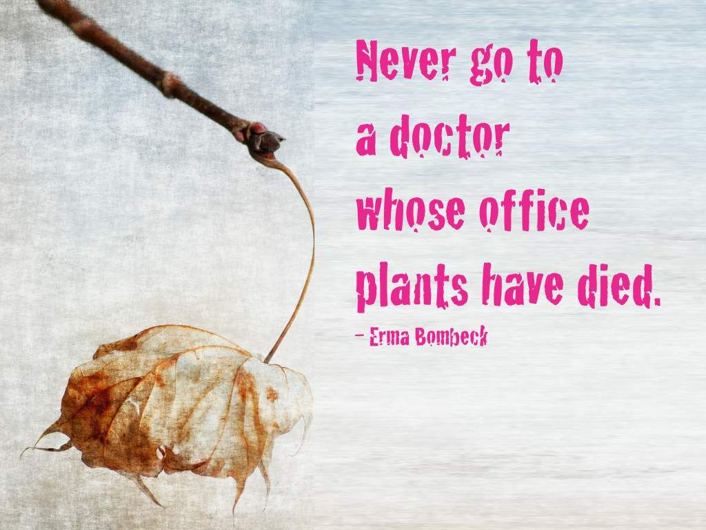 Inspirational Quotes For Doctors Office Quotesgram Inspirational Office Quotes Erma Bombeck Quotes Erma Bombeck