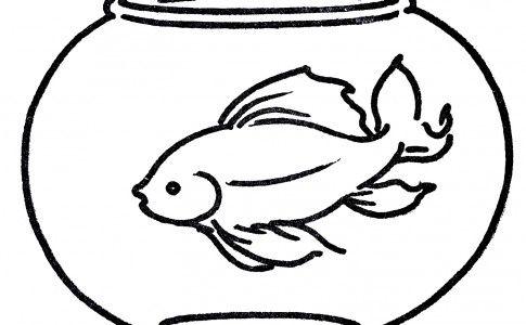 Free Clipart Goldfish In Bowl Line Art Dieren Vissen