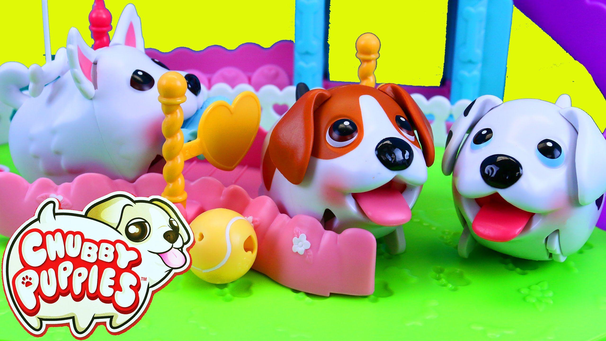Popular Dalmation Chubby Adorable Dog - f5b52b17c2c43f2d485138fae35a4218  Collection_916070  .jpg