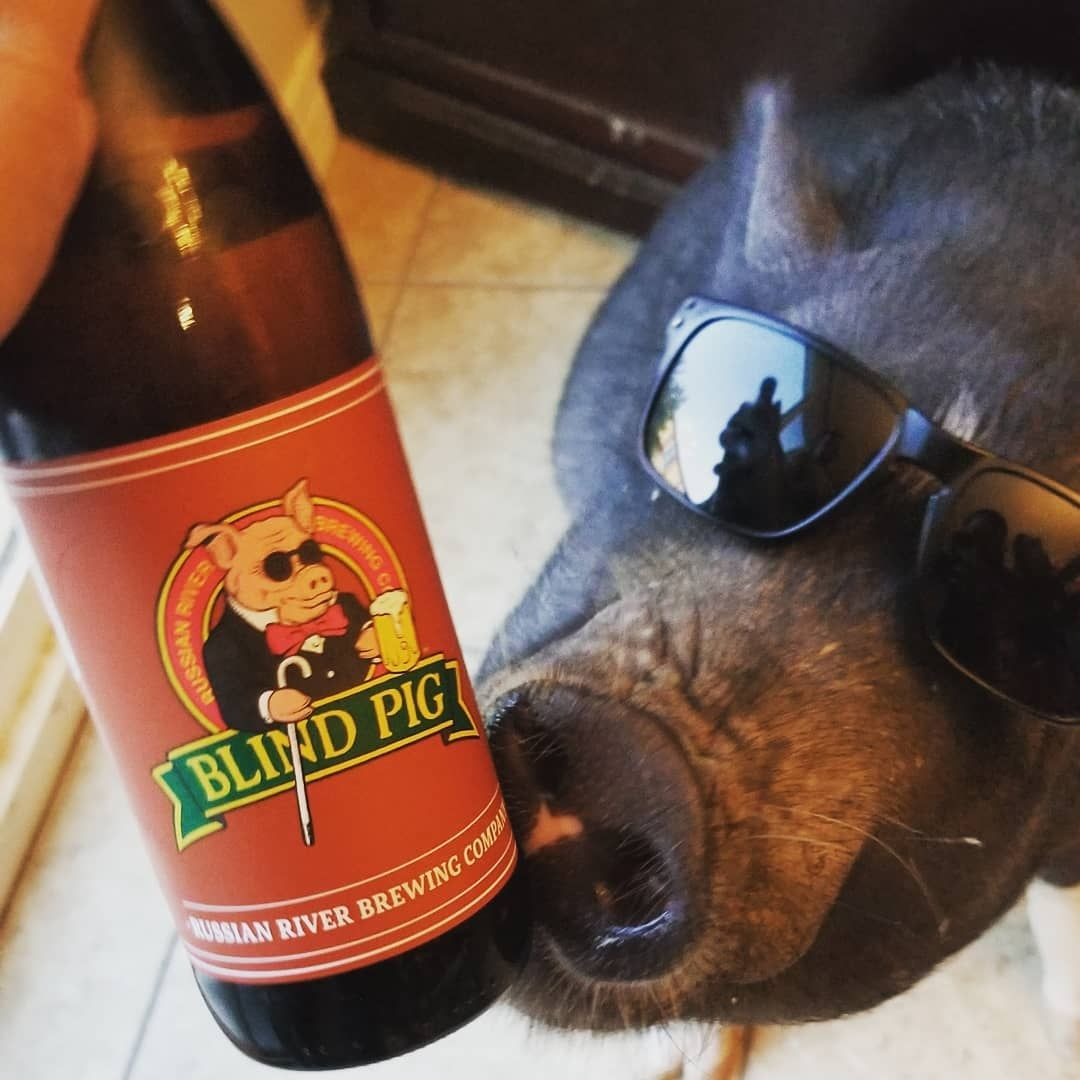 I Found A Beer Just For Me Russianriverbrewingofficial Blindpig