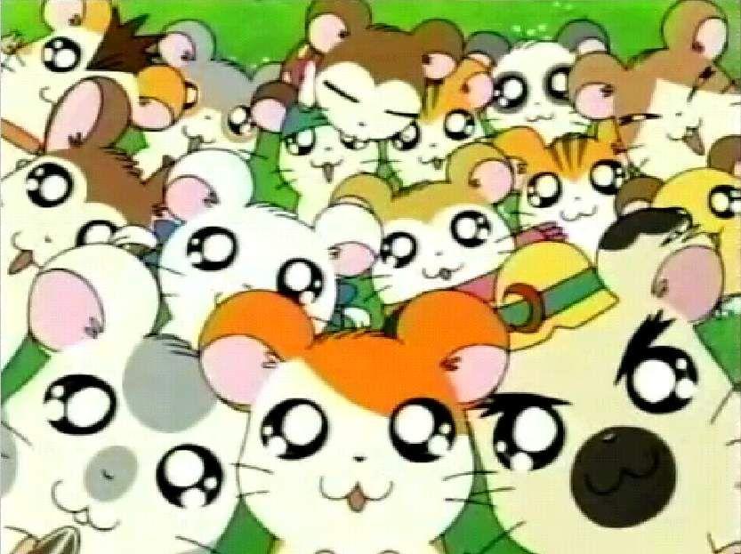 Hamtaro Hamtaro Anime E Desenhos Animados