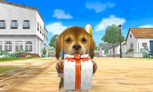 Going Out With Your Pet Nintendogs Cats Cats