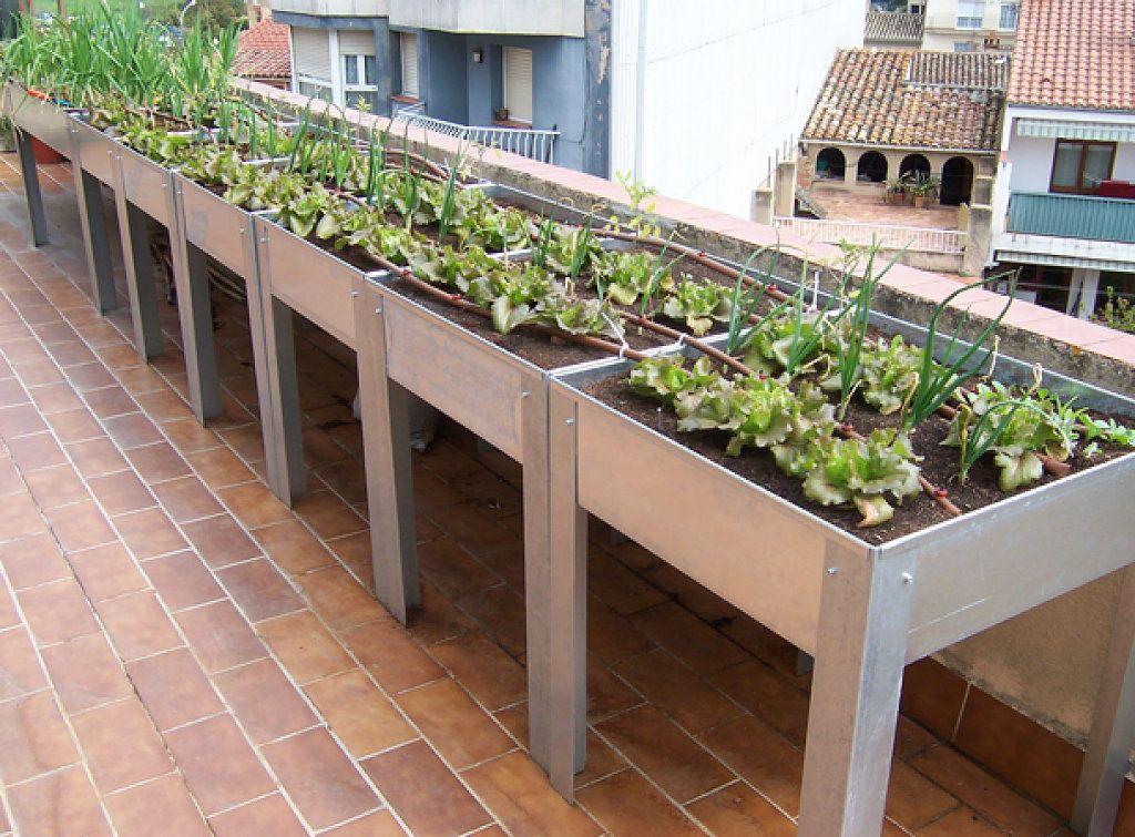 Crea Tu Propio Huerto Ecológico En Casa Huerto Urbano Huerto En Casa Huerto