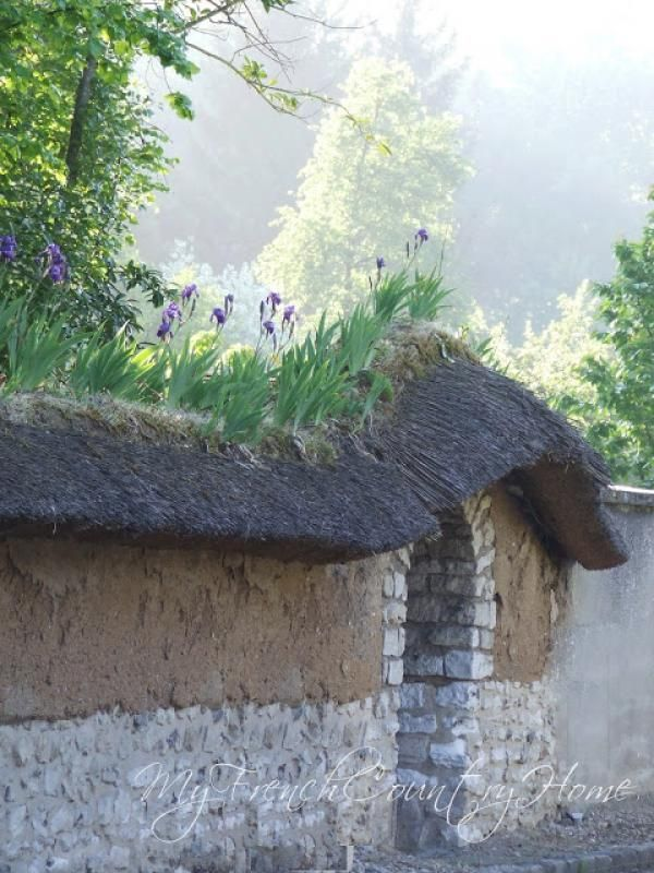 French Irises On Rooftops My French Country Home French Exterior French Country House