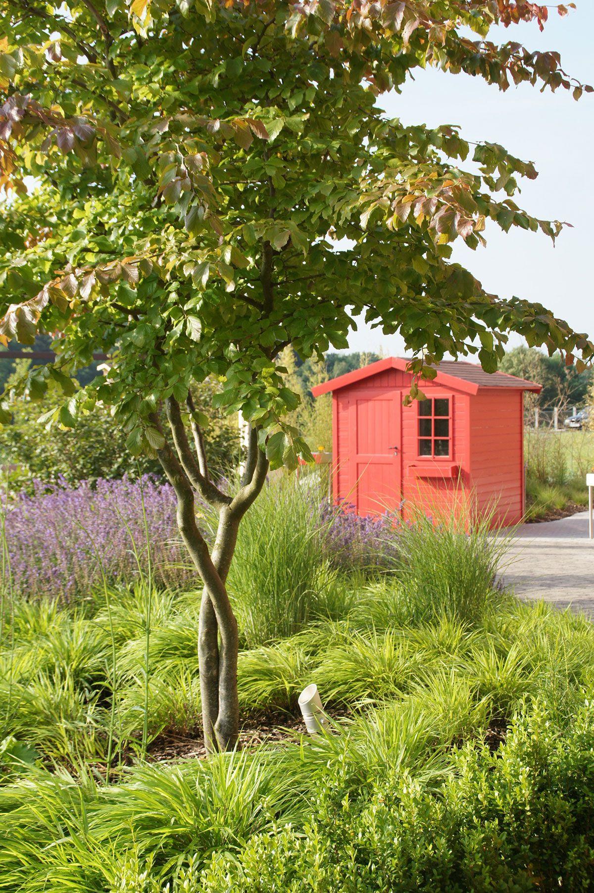 Abri Jardin Plantation Www Vereal Lu Jardin Et Foret Luxembourg
