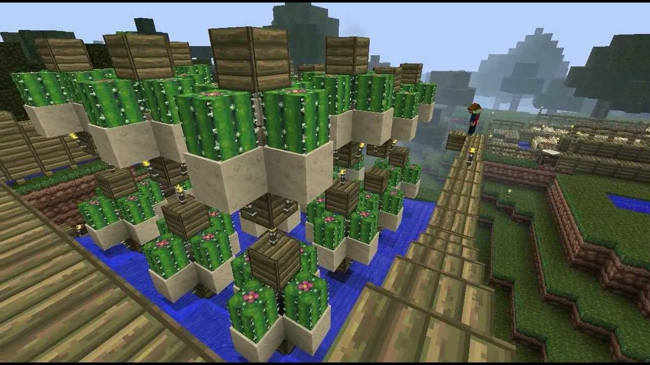 Minecraft Catus Farm Designs Minecraft Simple Cactus Farm Design
