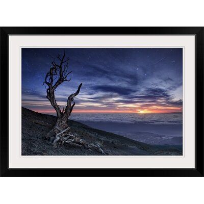 Great Big Canvas Beyond the Sky by Andrea Auf Dem Brinke, print wall art. A dead tree with twisted branches sits on a hillside overlooking a valley of clouds and a dramatic sunset. Format: Black Frame, Size: 28