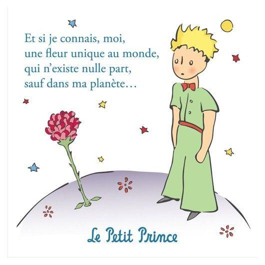 Le Petit Prince Et La Fleur
