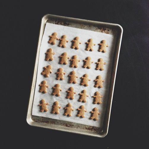 Gingerkids