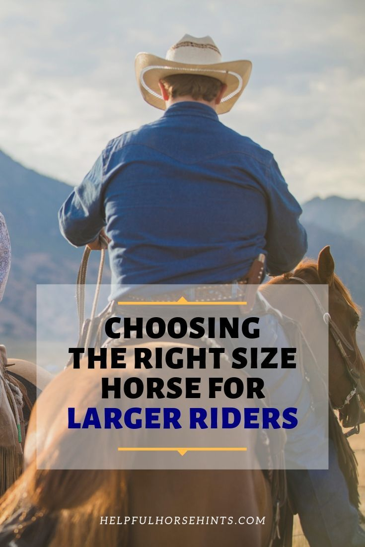How to choose the right size horse based on your height