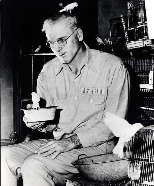 Robert Stroud The Real Birman Of Alcatraz Strange History