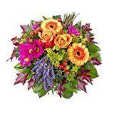 Amazon Angebote Blumenstrauß Blumenstrauß Provence: Hommage an die farbenfrohe Landschaft der Provence! Zwei Germini in…%#Quickberater%