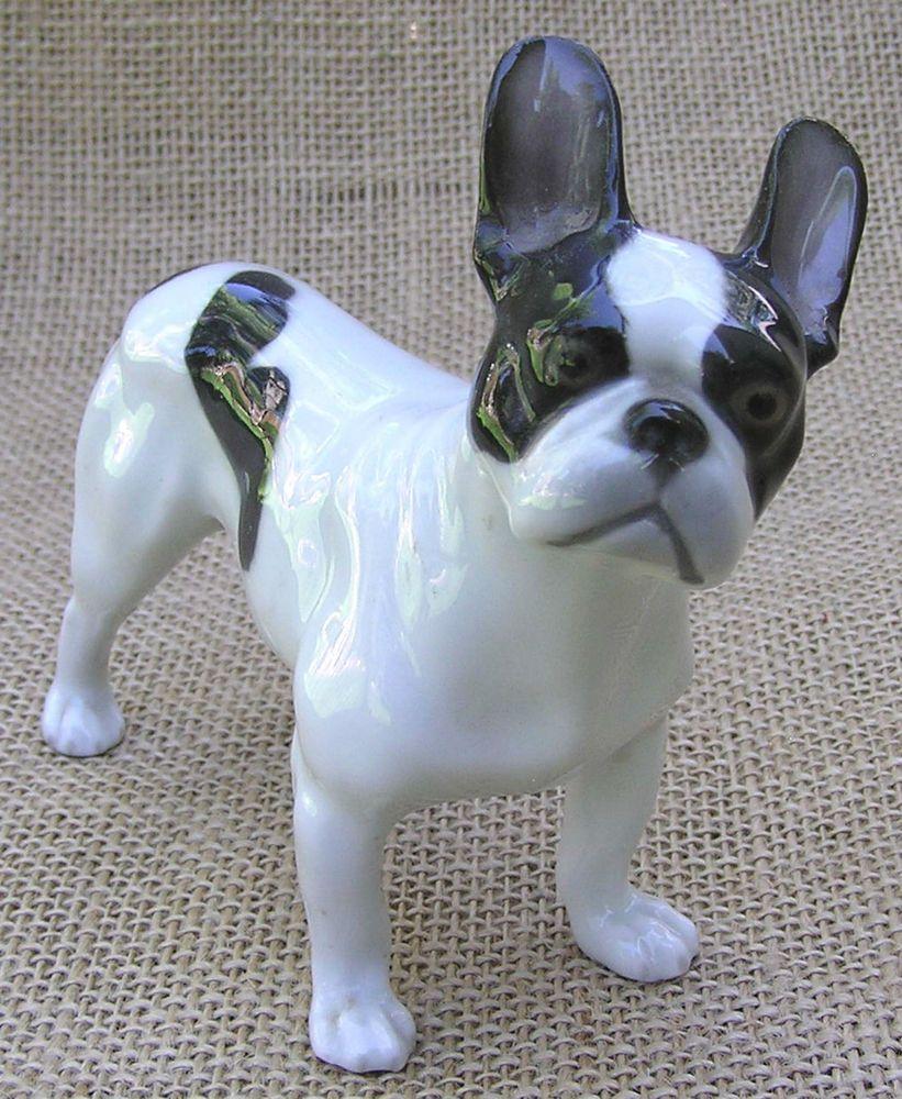 Sable Tri Akc English Bulldog Male 4 Weeks Cute Animals English