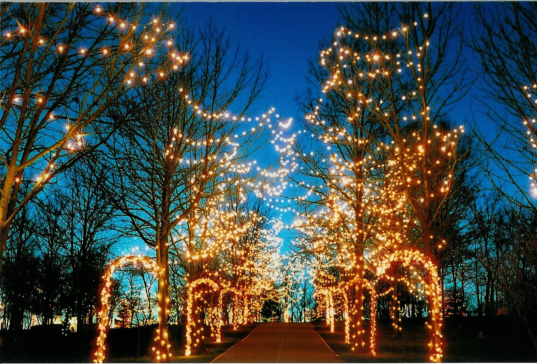 take your family to see the holiday lights on the hill at pyramid hill sculpture park wwwgettothebccom butler county ohio
