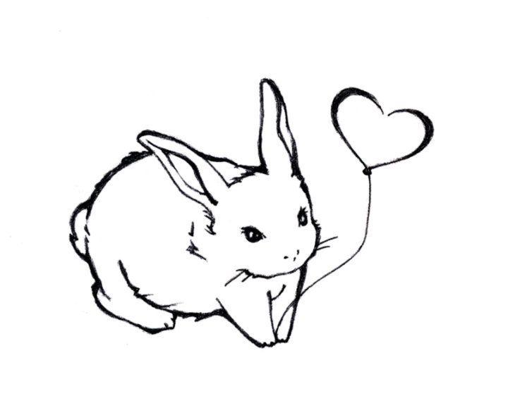 Bunny drawing google keresés