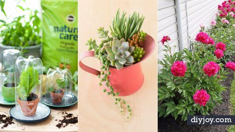 31 Awesome DIY Tips for Spring Gardening | DIY Joy Projects and Crafts Ideas