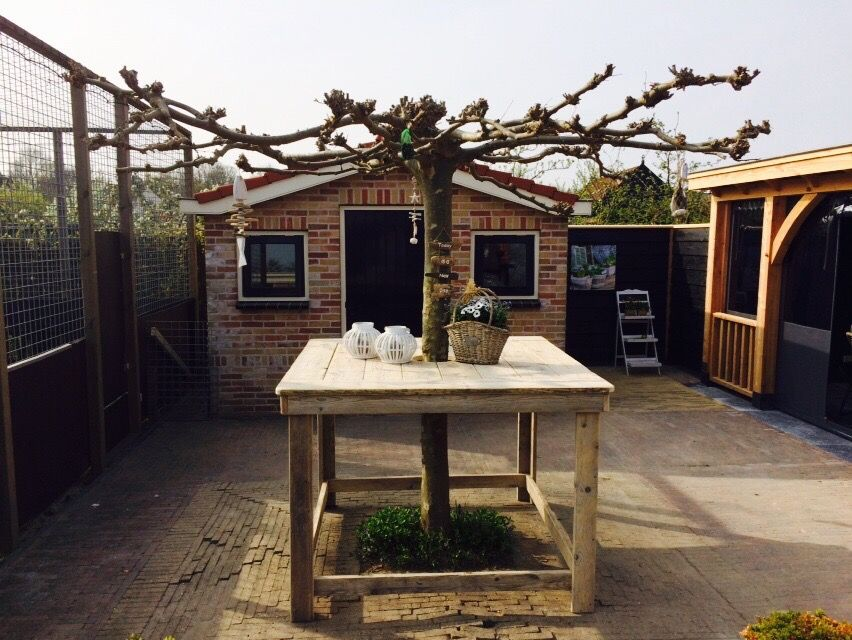 Statafel van gebruikt steigerhout om boom gemaakt door Jan - outdoor küche holz