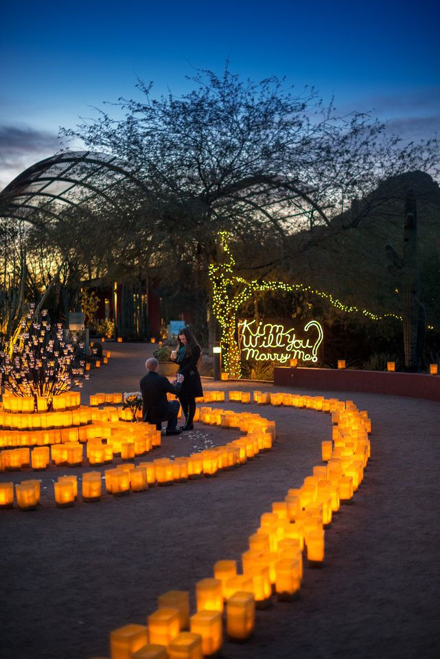 Kim Scott Proposal Desert Botanical Garden