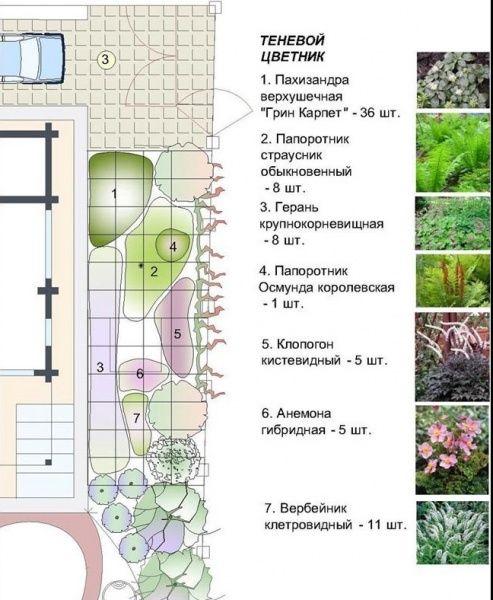 ландшафтный дизайн фото схемы 3