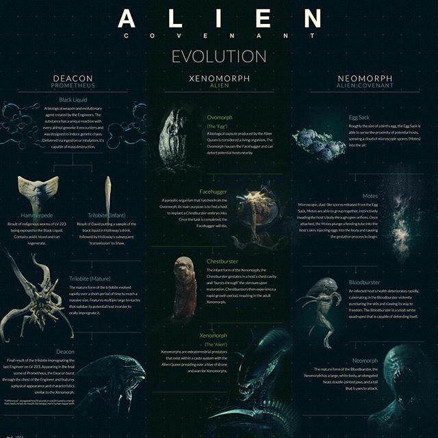 alien covenant dieulois