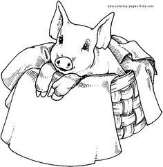 free images of pigs to paint on wood pig color page animal coloring pages - Coloring Pages Of Pigs