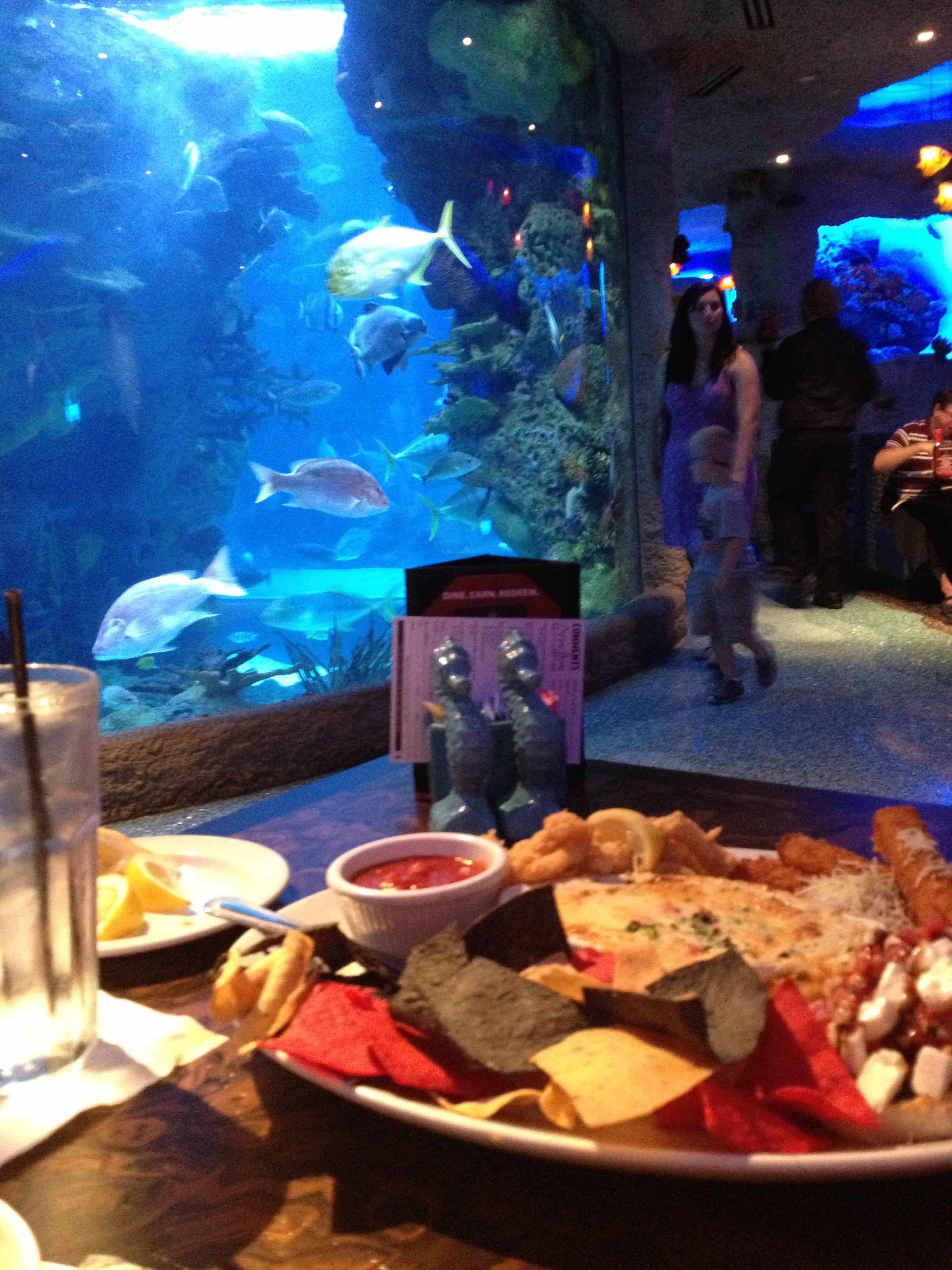 Underwater Aquarium Restaurant! Nashville, TN. | Visit ...