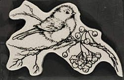 Snow Bird Cling Stamp by Stampendous (4005870)           Paper Wishes             $6.99