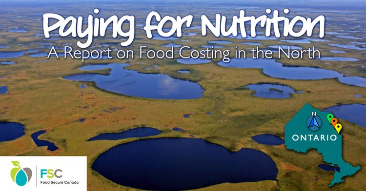 Paying for nutrition a report on food costing in the