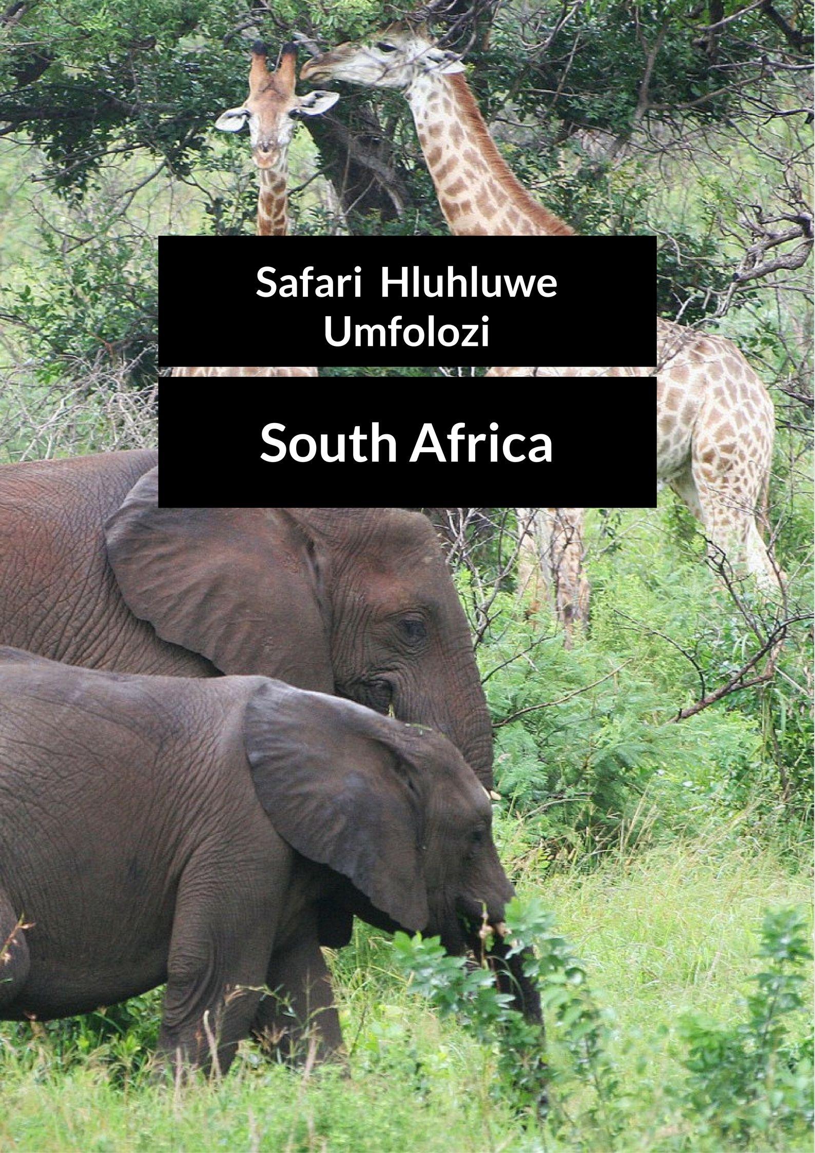 Op safari door het Hluhluwe Umfolozi park
