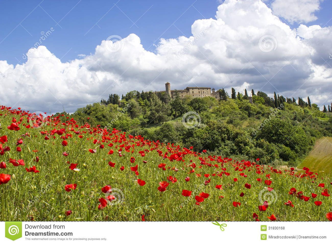 Tuscan Landscape Photos Copyright Free Spring In Tuscany Royalty Free Stock Photos Image 31830168 Landscape Photos Tuscany Landscape Tuscan Landscaping