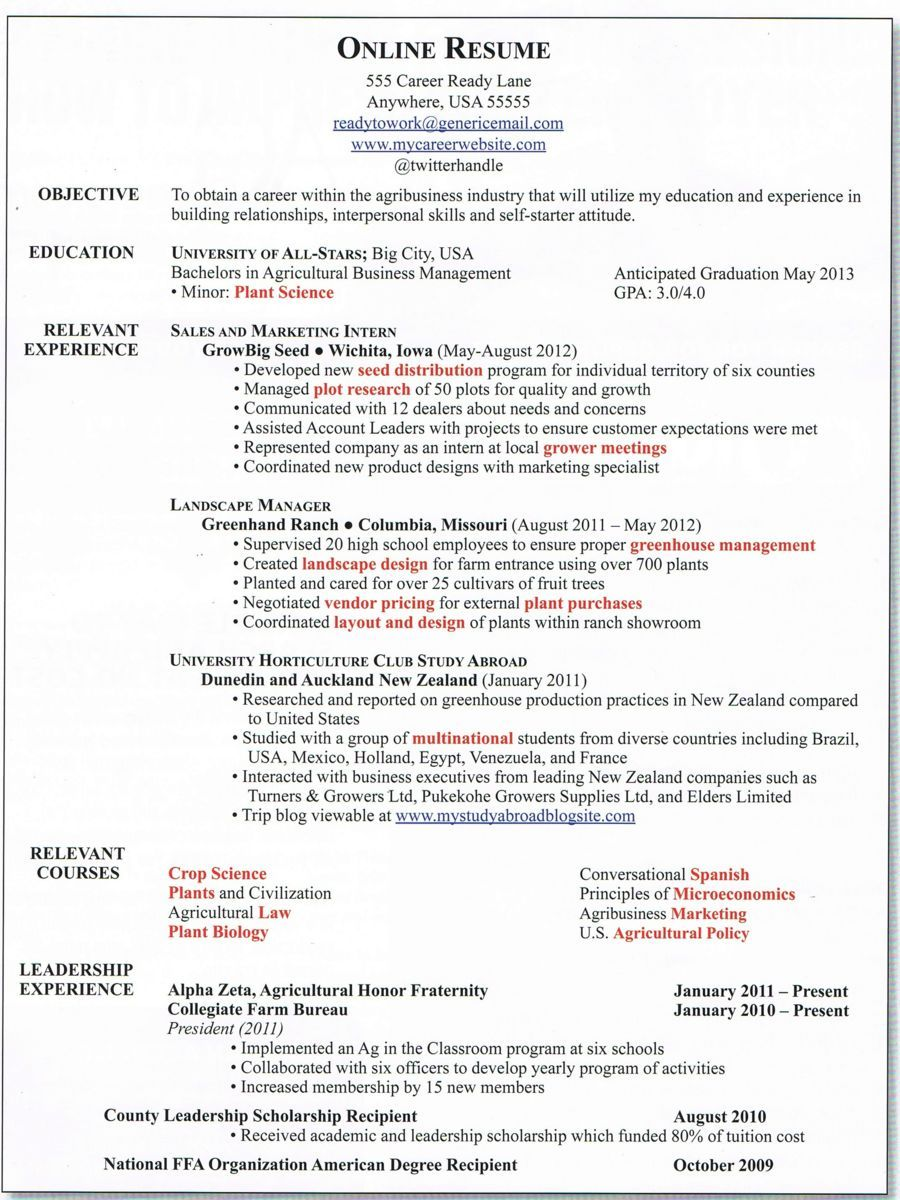 Developing A Great Online Resume Resumes Cover Letters