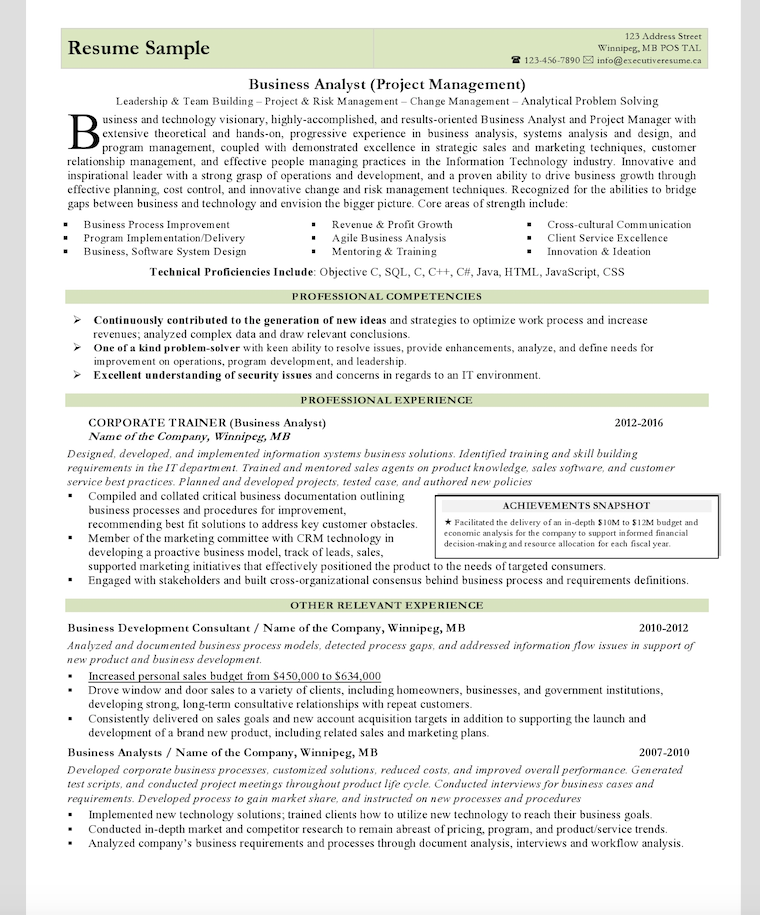 Professional Branded Resume Sample