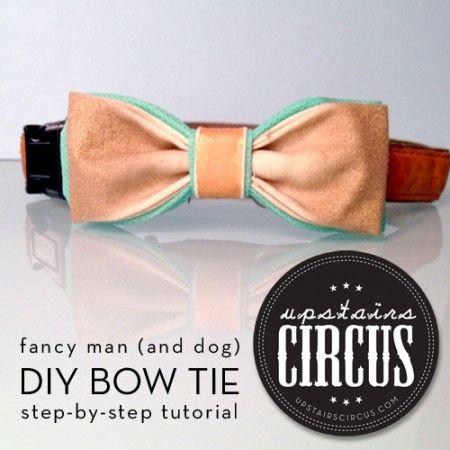 Diy Tutorial Fancy Man And Dog Bow Tie