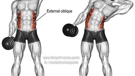dumbbell side bend exercise  ejercicios de entrenamiento